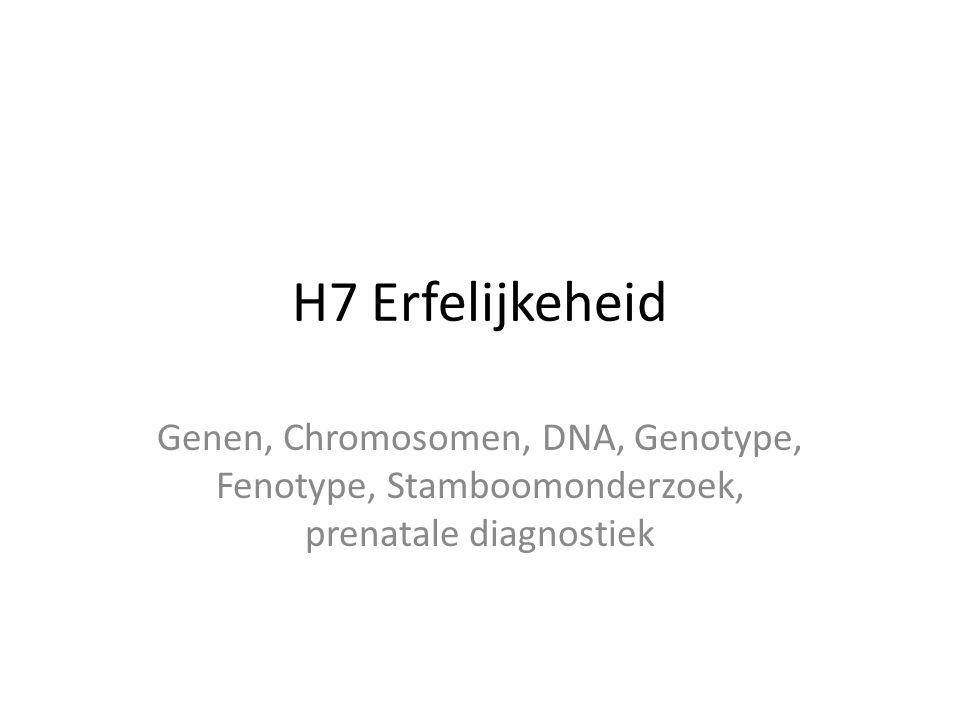 H7 Erfelijkeheid Genen, Chromosomen, DNA, Genotype, Fenotype, Stamboomonderzoek, prenatale diagnostiek