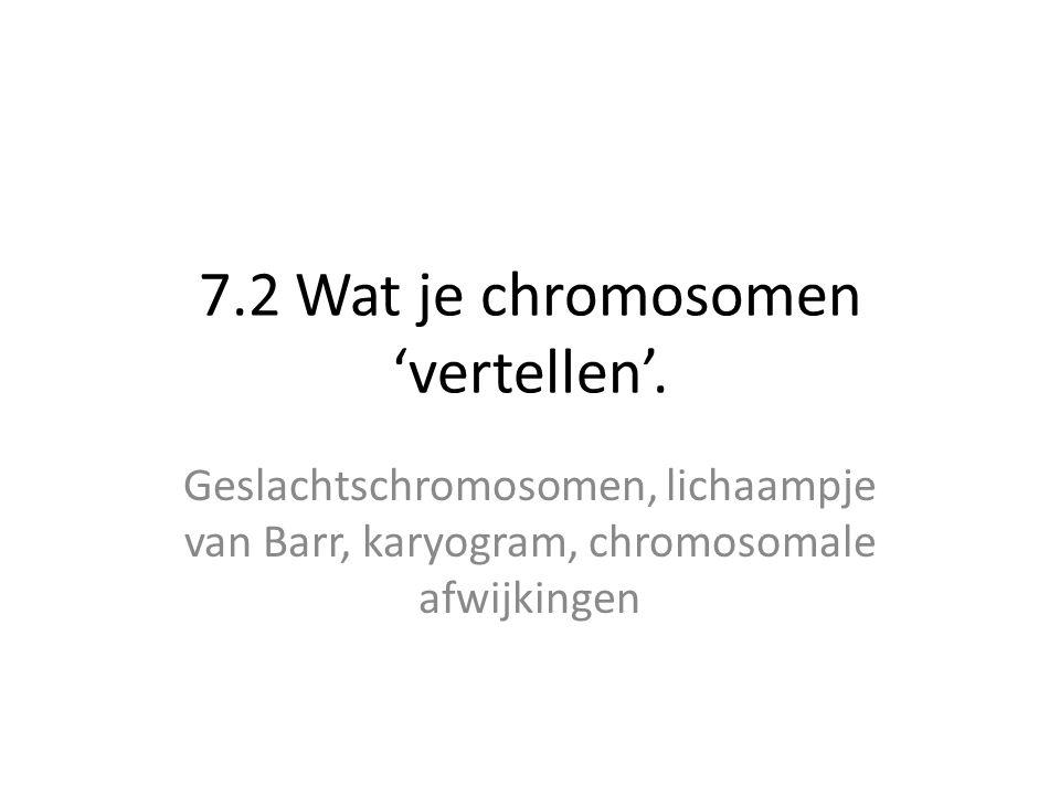 Karyogram • Karyogram = 'foto' van de chromosomen tijdens de metafase van de mitose.