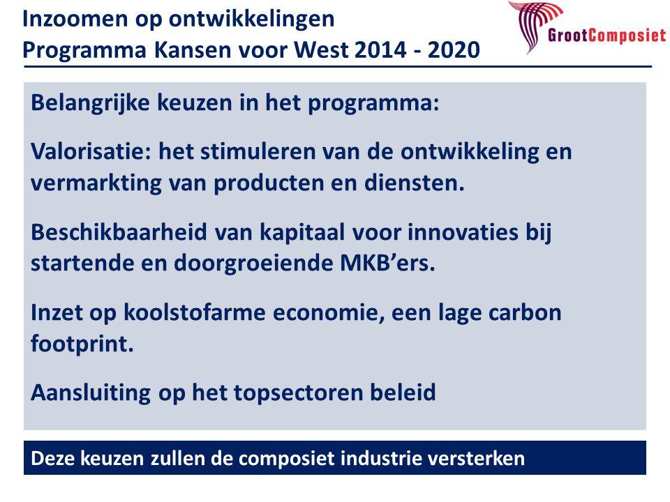 Belangrijke keuzen in het programma: Valorisatie: het stimuleren van de ontwikkeling en vermarkting van producten en diensten.
