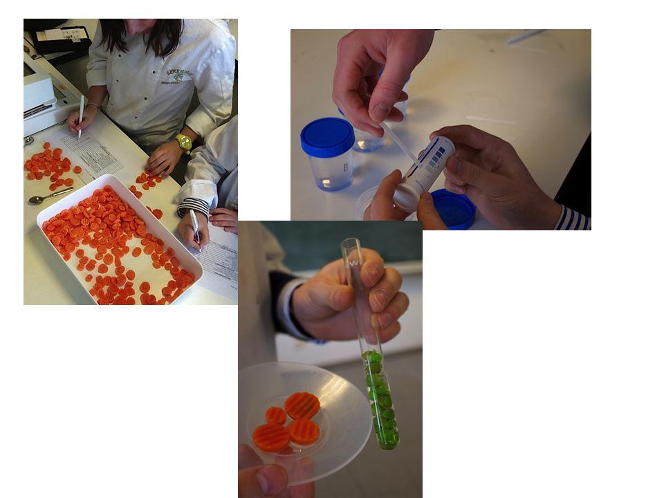 Regisseur op de set van arbeidsmarkt en onderwijs Projectvoorstellen 2014 • Uitbreiding sessies in the mood for food.