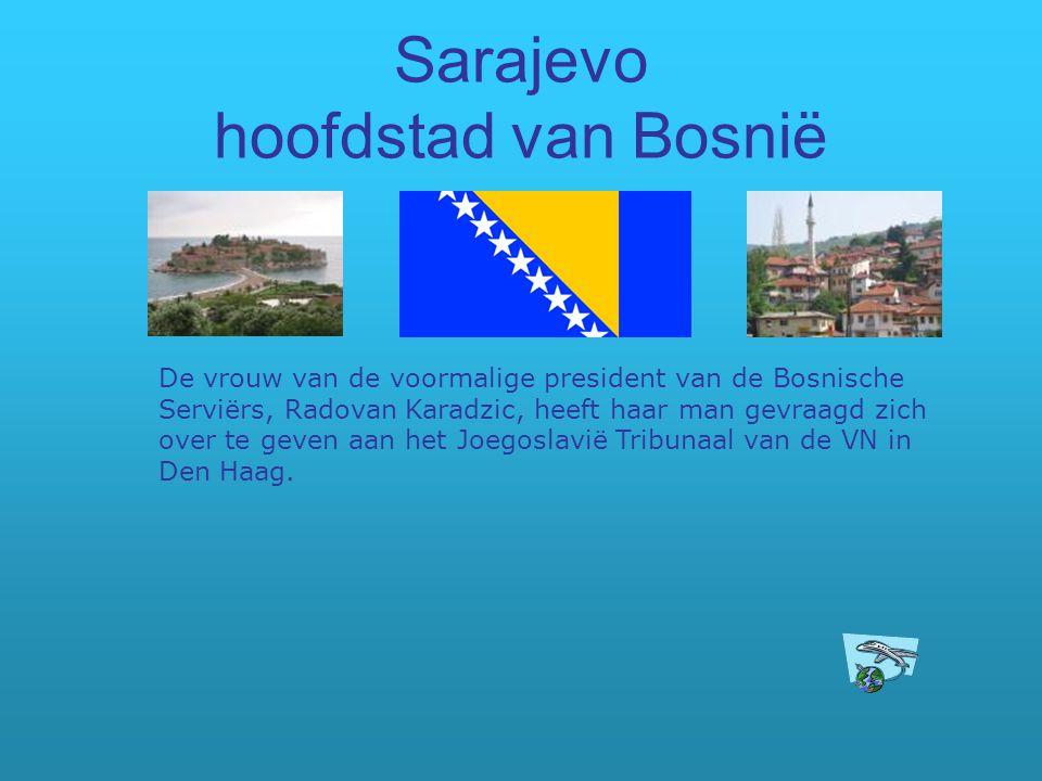 Sarajevo hoofdstad van Bosnië De vrouw van de voormalige president van de Bosnische Serviërs, Radovan Karadzic, heeft haar man gevraagd zich over te g