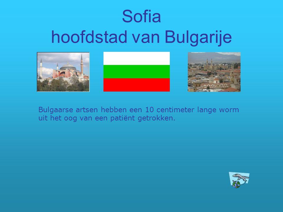 Sofia hoofdstad van Bulgarije Bulgaarse artsen hebben een 10 centimeter lange worm uit het oog van een patiënt getrokken.