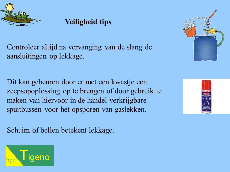 T igeno Opgericht 1947 Schuim of bellen betekent lekkage. Veiligheid tips Controleer altijd na vervanging van de slang de aansluitingen op lekkage. Di