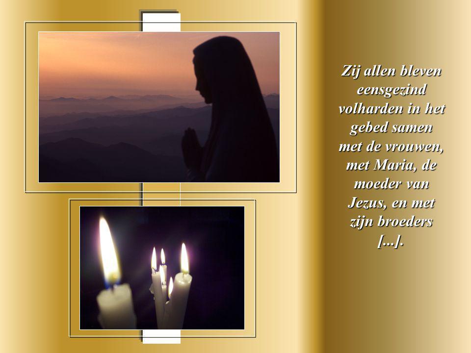 Zij allen bleven eensgezind volharden in het gebed samen met de vrouwen, met Maria, de moeder van Jezus, en met zijn broeders [...].