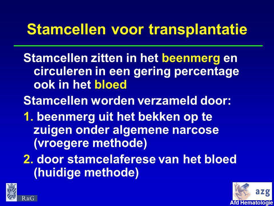 3 umcg Afd Hematologie Stamcellen voor transplantatie Stamcellen zitten in het beenmerg en circuleren in een gering percentage ook in het bloed Stamce