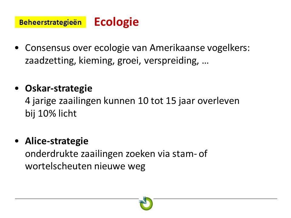 Ecologie Beheerstrategieën •Consensus over ecologie van Amerikaanse vogelkers: zaadzetting, kieming, groei, verspreiding, … •Oskar-strategie 4 jarige