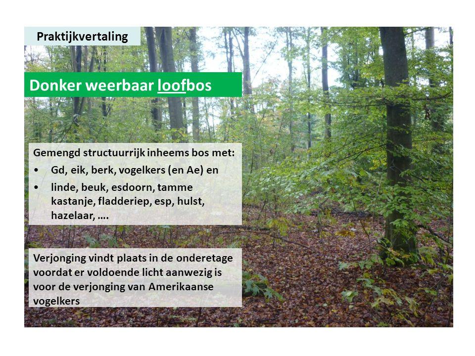 Praktijkvertaling Donker weerbaar loofbos Gemengd structuurrijk inheems bos met: •Gd, eik, berk, vogelkers (en Ae) en •linde, beuk, esdoorn, tamme kas