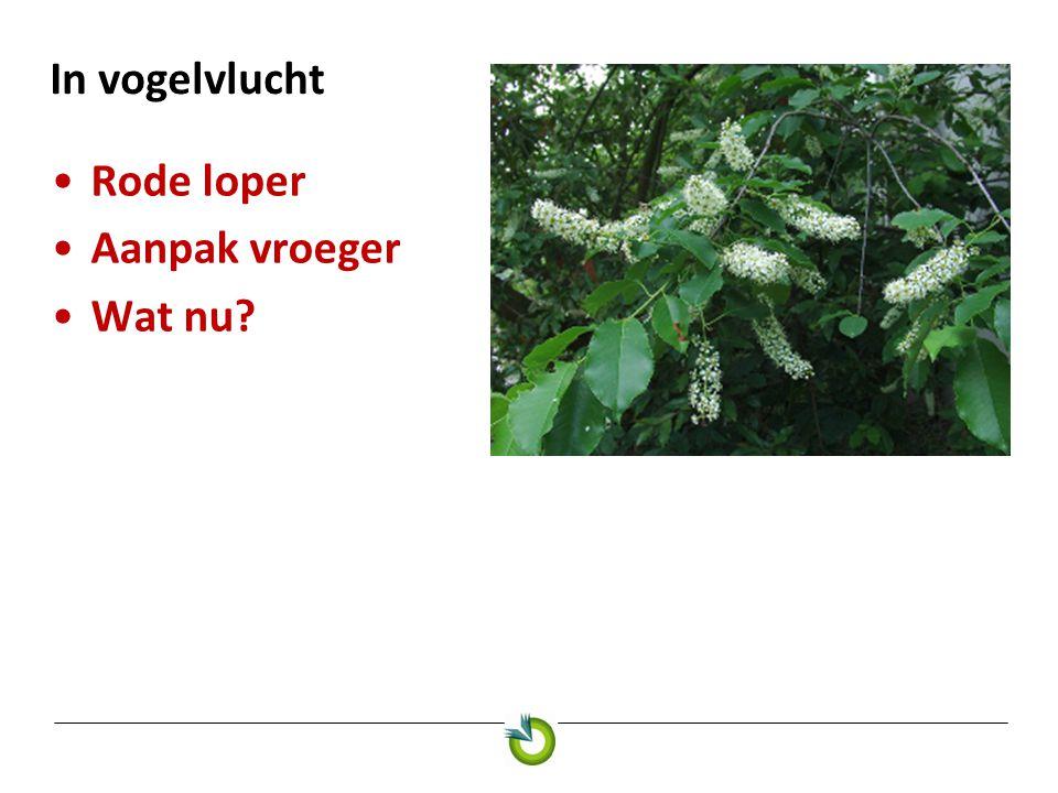 Aanpak ANB Vlaanderen Praktijkvertaling.