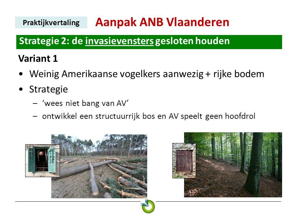 Aanpak ANB Vlaanderen Praktijkvertaling Strategie 2: de invasievensters gesloten houden Variant 1 •Weinig Amerikaanse vogelkers aanwezig + rijke bodem