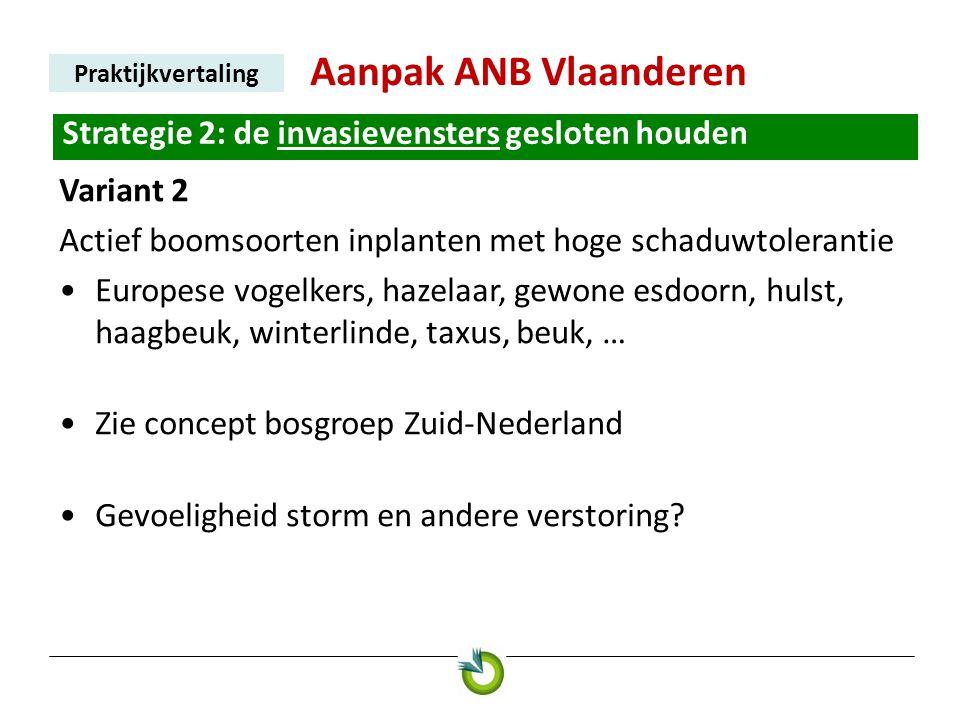 Aanpak ANB Vlaanderen Praktijkvertaling Strategie 2: de invasievensters gesloten houden Variant 2 Actief boomsoorten inplanten met hoge schaduwtoleran
