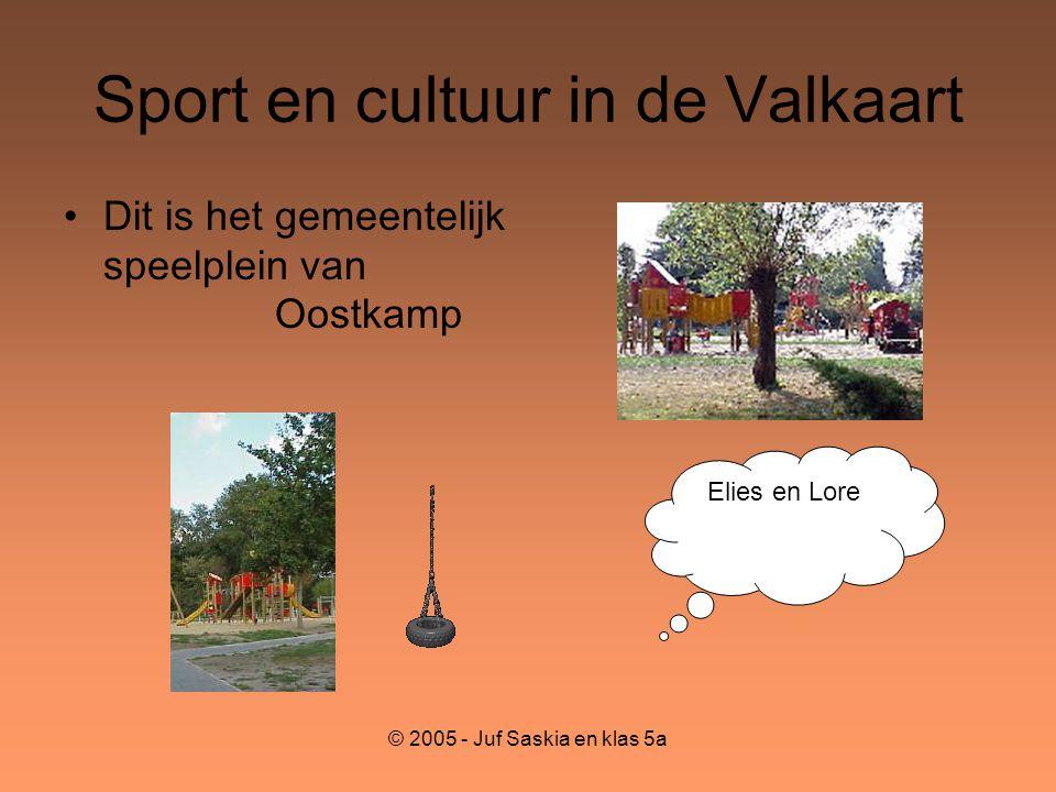 © 2005 - Juf Saskia en klas 5a Sport en cultuur in de Valkaart •Dit is het gemeentelijk speelplein van Oostkamp Elies en Lore