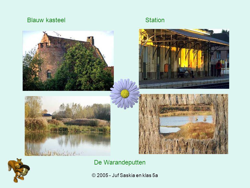 © 2005 - Juf Saskia en klas 5a Blauw kasteelStation De Warandeputten
