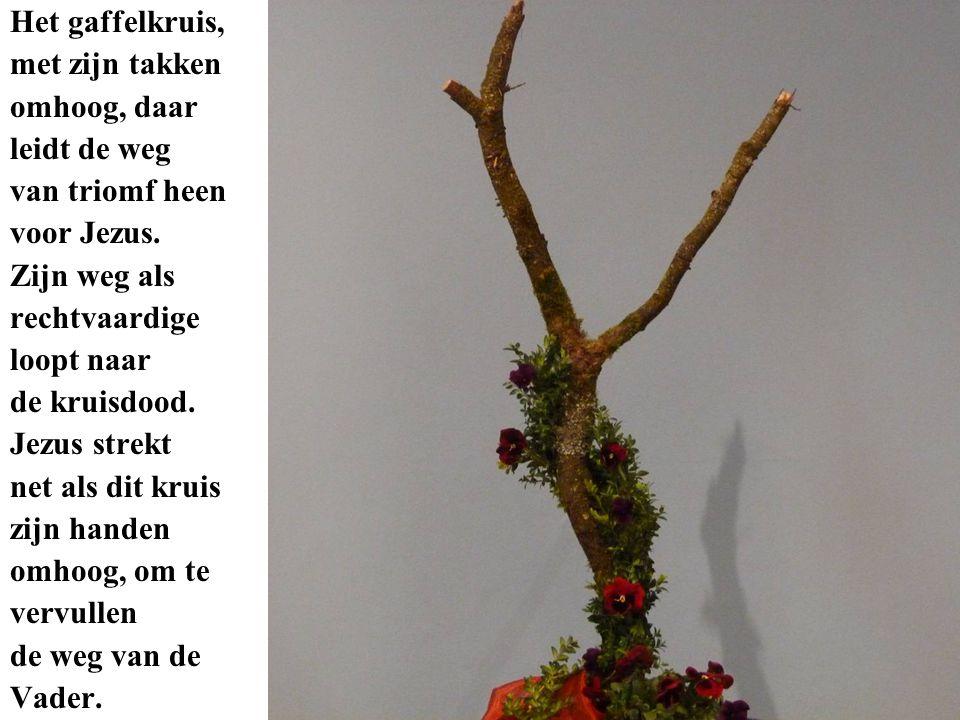 Het gaffelkruis, met zijn takken omhoog, daar leidt de weg van triomf heen voor Jezus.