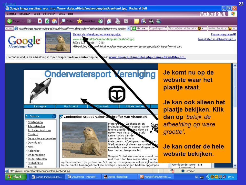 22inhoud Je komt nu op de website waar het plaatje staat. Je kan ook alleen het plaatje bekijken. Klik dan op 'bekijk de afbeelding op ware grootte'.