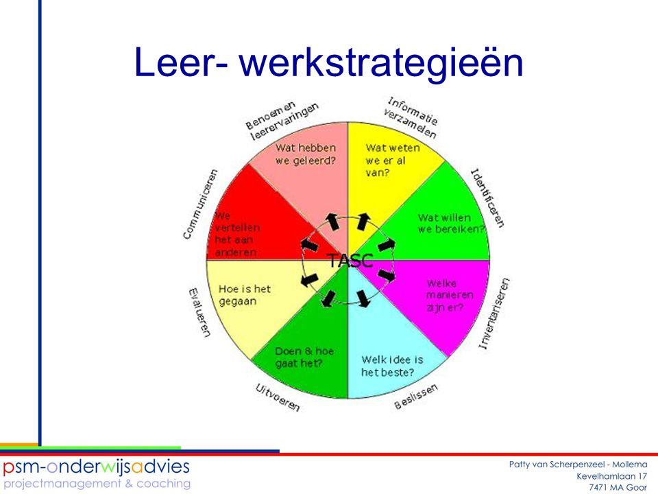 Leer- werkstrategieën