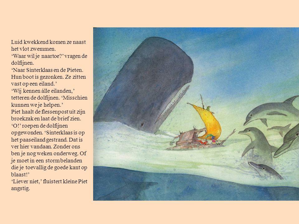 Luid kwekkend komen ze naast het vlot zwemmen. 'Waar wil je naartoe?' vragen de dolfijnen. 'Naar Sinterklaas en de Pieten. Hun boot is gezonken. Ze zi