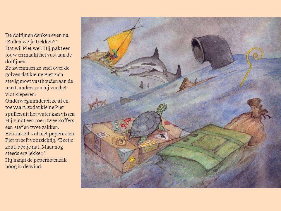 De dolfijnen denken even na 'Zullen we je trekken?' Dat wil Piet wel. Hij pakt een touw en maakt het vast aan de dolfijnen. Ze zwemmen zo snel over de