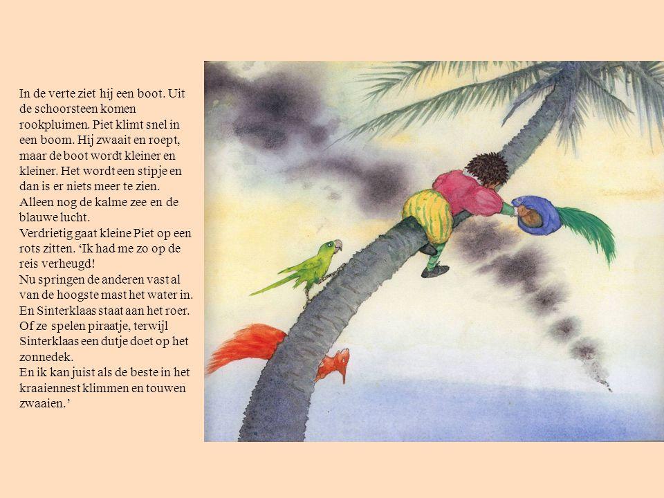 In de verte ziet hij een boot. Uit de schoorsteen komen rookpluimen. Piet klimt snel in een boom. Hij zwaait en roept, maar de boot wordt kleiner en k
