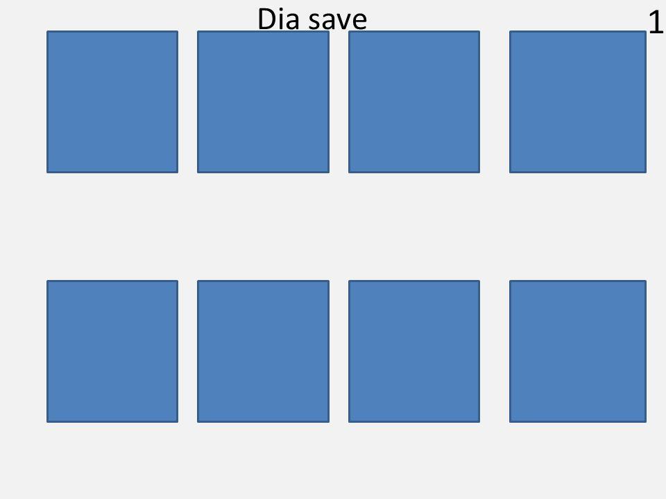 1 Dia save