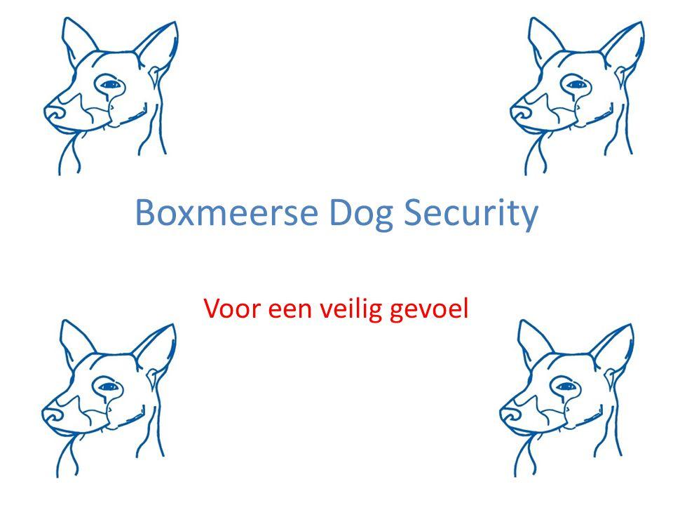 Boxmeerse Dog Security Voor een veilig gevoel