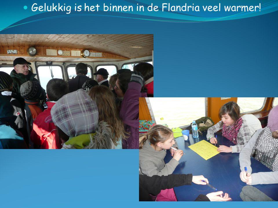  Gelukkig is het binnen in de Flandria veel warmer!
