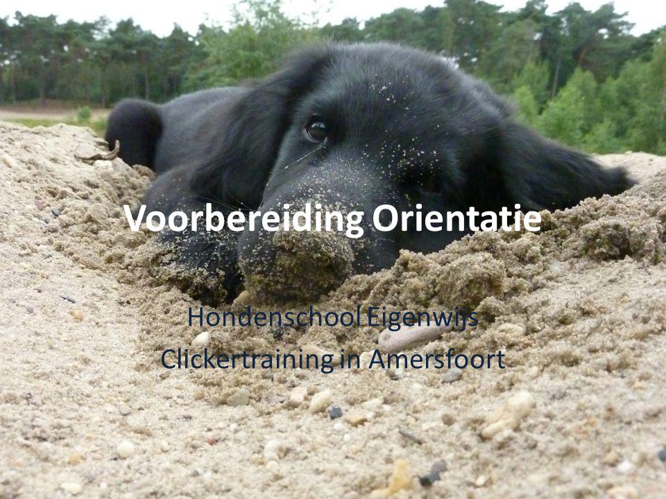 Voorbereiding Orientatie Hondenschool Eigenwijs Clickertraining in Amersfoort