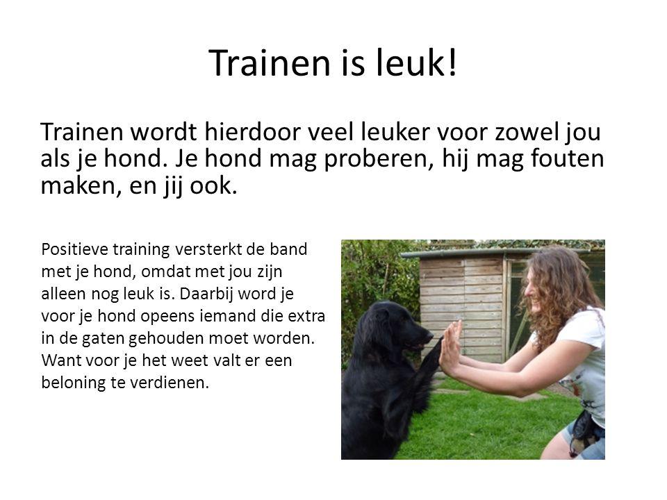 Trainen is leuk! Trainen wordt hierdoor veel leuker voor zowel jou als je hond. Je hond mag proberen, hij mag fouten maken, en jij ook. Positieve trai
