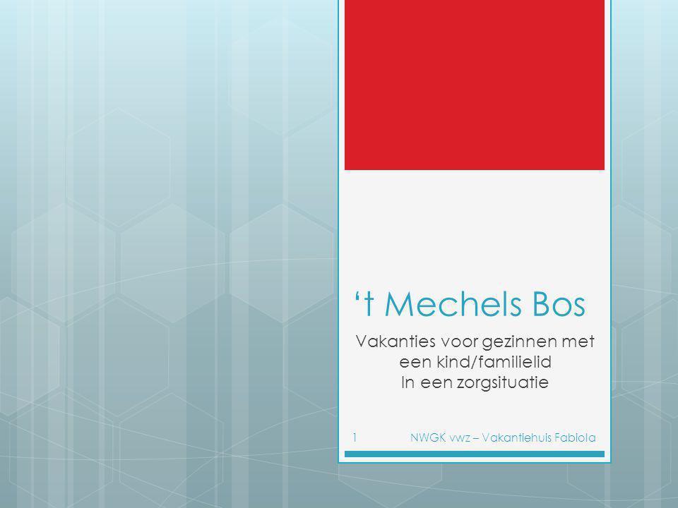 't Mechels Bos Vakanties voor gezinnen met een kind/familielid In een zorgsituatie NWGK vwz – Vakantiehuis Fabiola1