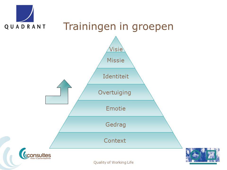 Trainingen in groepen Quality of Working Life Visie Missie Identiteit Overtuiging Emotie Gedrag Context