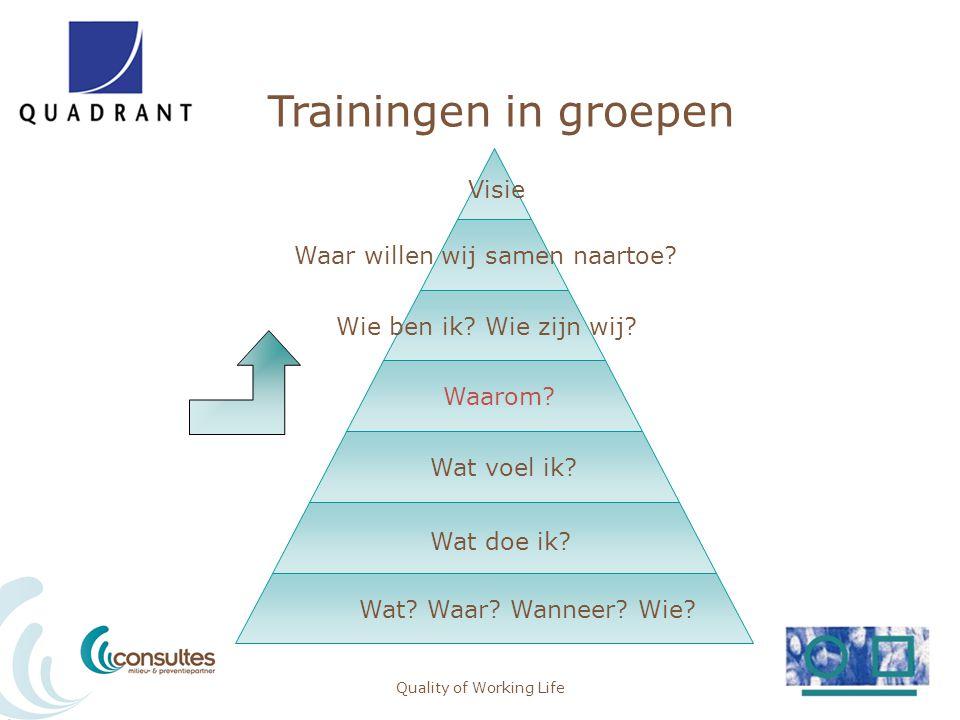Trainingen in groepen Quality of Working Life Visie Waar willen wij samen naartoe? Wie ben ik? Wie zijn wij? Waarom? Wat voel ik? Wat doe ik? Wat? Waa