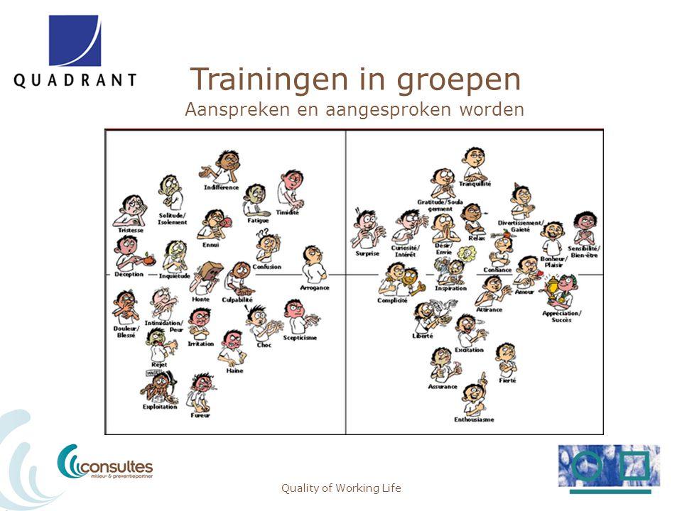 Trainingen in groepen Meetbaarheid: veilig gedrag Quality of Working Life