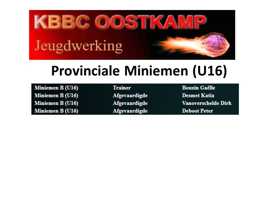 Provinciale Miniemen (U16)