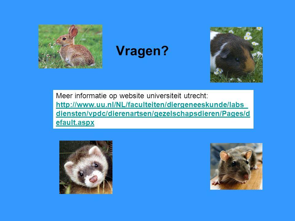 Vragen? Meer informatie op website universiteit utrecht: http://www.uu.nl/NL/faculteiten/diergeneeskunde/labs_ diensten/vpdc/dierenartsen/gezelschapsd