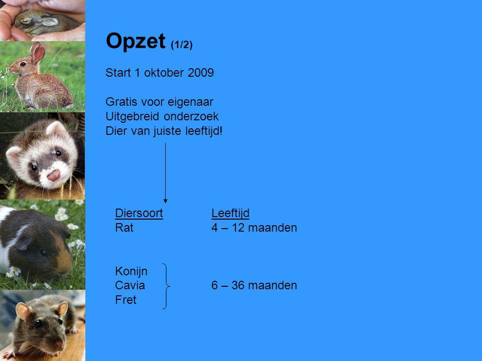 Opzet (1/2) Start 1 oktober 2009 Gratis voor eigenaar Uitgebreid onderzoek Dier van juiste leeftijd! DiersoortLeeftijd Rat4 – 12 maanden Konijn Cavia6