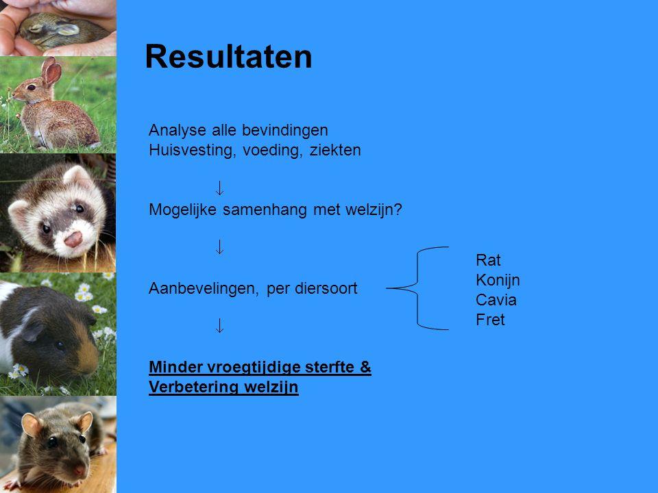 Resultaten Analyse alle bevindingen Huisvesting, voeding, ziekten  Mogelijke samenhang met welzijn?  Aanbevelingen, per diersoort  Minder vroegtijd