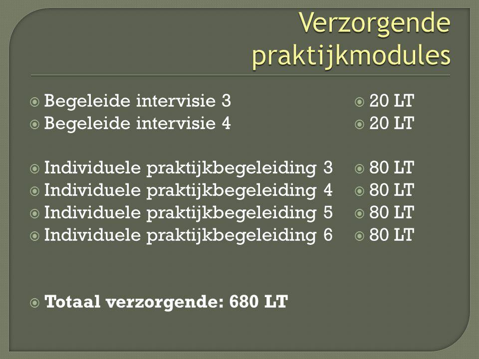  Begeleide intervisie 3  Begeleide intervisie 4  Individuele praktijkbegeleiding 3  Individuele praktijkbegeleiding 4  Individuele praktijkbegele