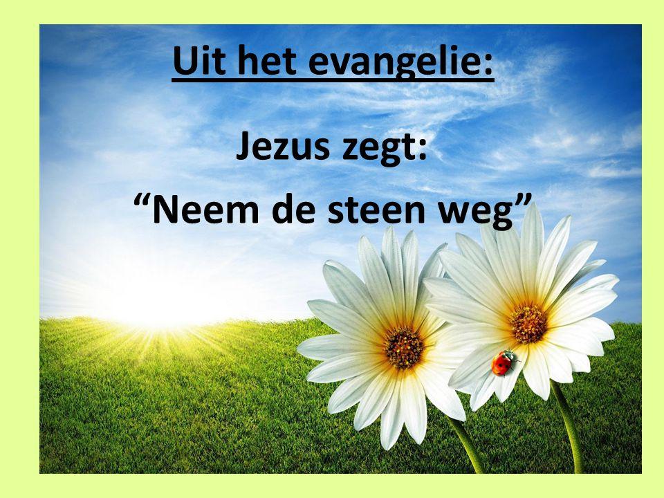 """Uit het evangelie: Jezus zegt: """"Neem de steen weg"""""""