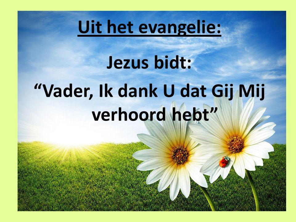 """Uit het evangelie: Jezus bidt: """"Vader, Ik dank U dat Gij Mij verhoord hebt"""""""
