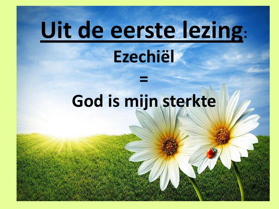Uit de eerste lezing : Ezechiël = God is mijn sterkte