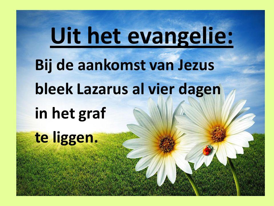 Uit het evangelie: Bij de aankomst van Jezus bleek Lazarus al vier dagen in het graf te liggen.