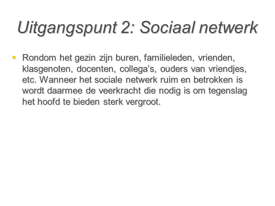 Uitgangspunt 2: Sociaal netwerk  Rondom het gezin zijn buren, familieleden, vrienden, klasgenoten, docenten, collega's, ouders van vriendjes, etc. Wa