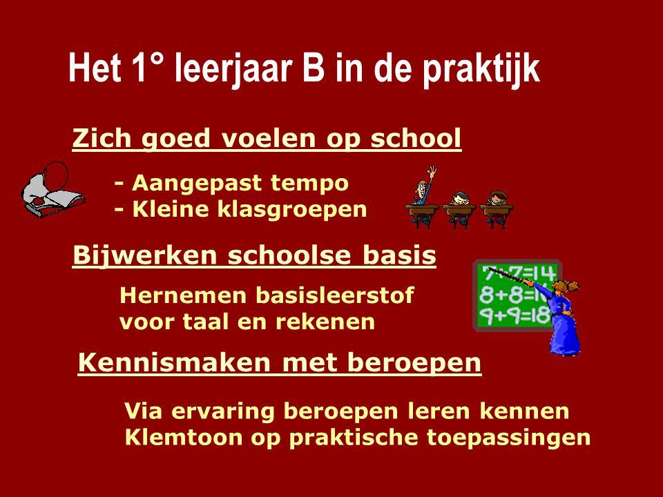 Het 1° leerjaar B in de praktijk Zich goed voelen op school - Aangepast tempo - Kleine klasgroepen Kennismaken met beroepen Via ervaring beroepen lere