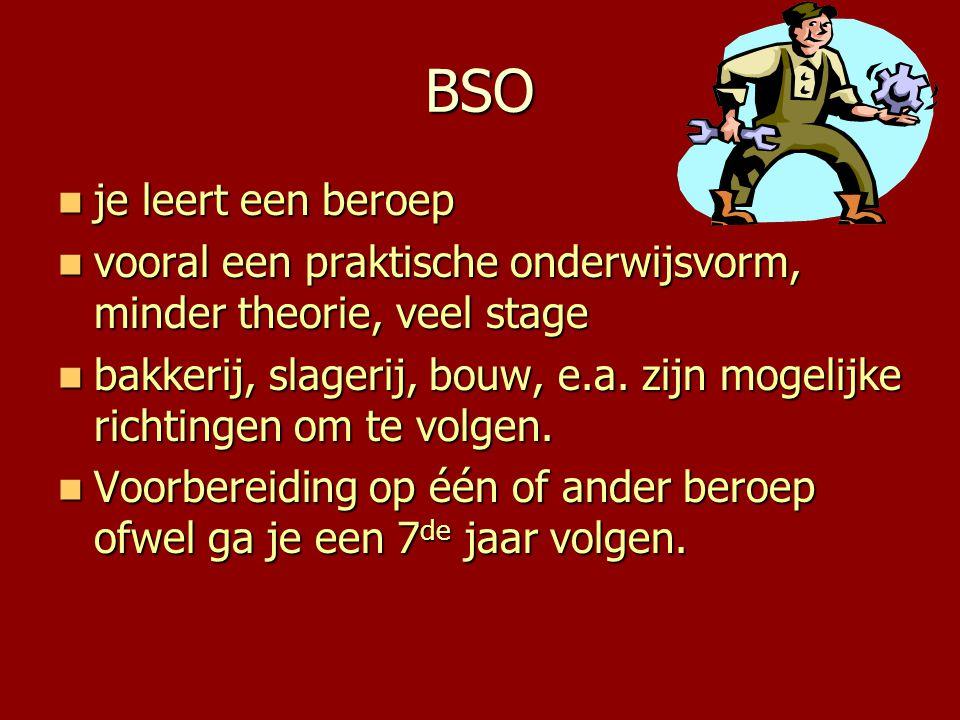 BSO  je leert een beroep  vooral een praktische onderwijsvorm, minder theorie, veel stage  bakkerij, slagerij, bouw, e.a. zijn mogelijke richtingen