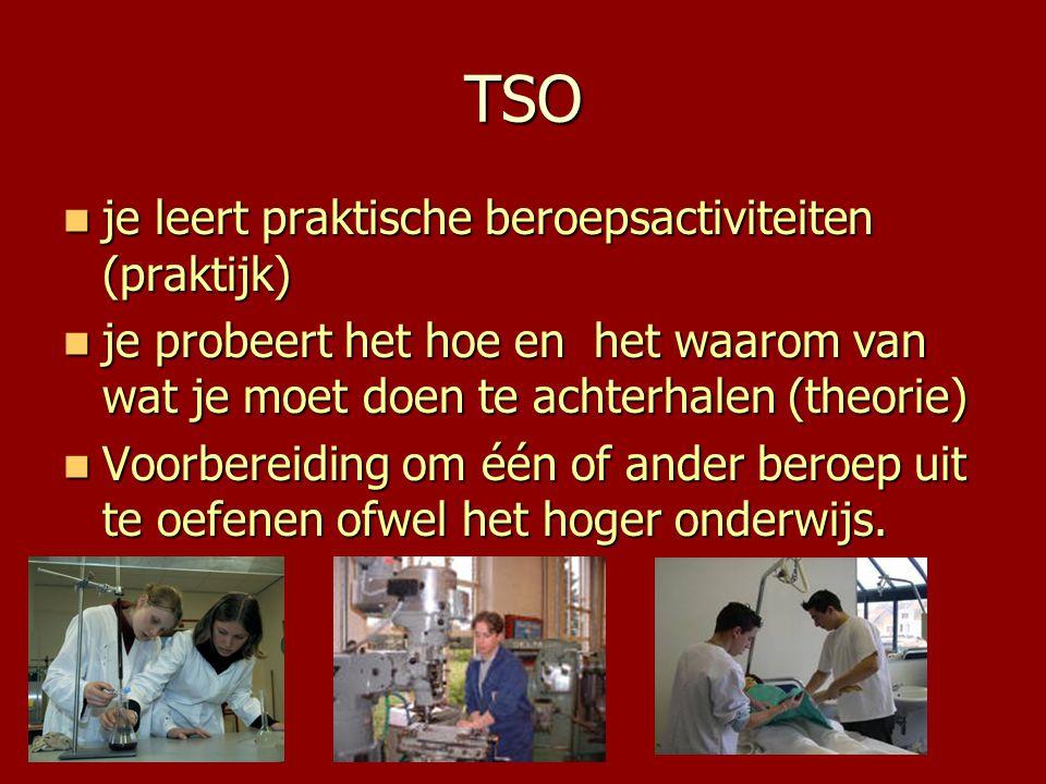 TSO  je leert praktische beroepsactiviteiten (praktijk)  je probeert het hoe en het waarom van wat je moet doen te achterhalen (theorie)  Voorberei