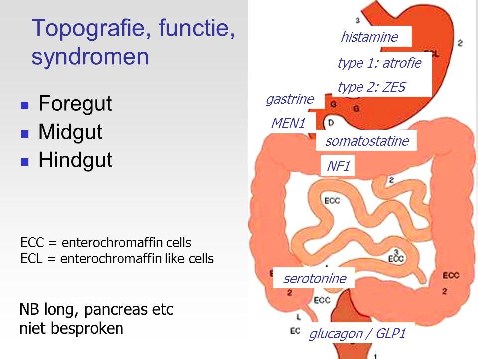 WHO 2010: uniforme classificatie die gebaseerd is op graad mitosenKi67 NET grade 1<2 / 10 HPF<2% NET grade 22-20 / 10 HPF3-20% NEC (=NET grade 3) -kleincellig -grootcellig >20 / 10 HPF>20% NB.