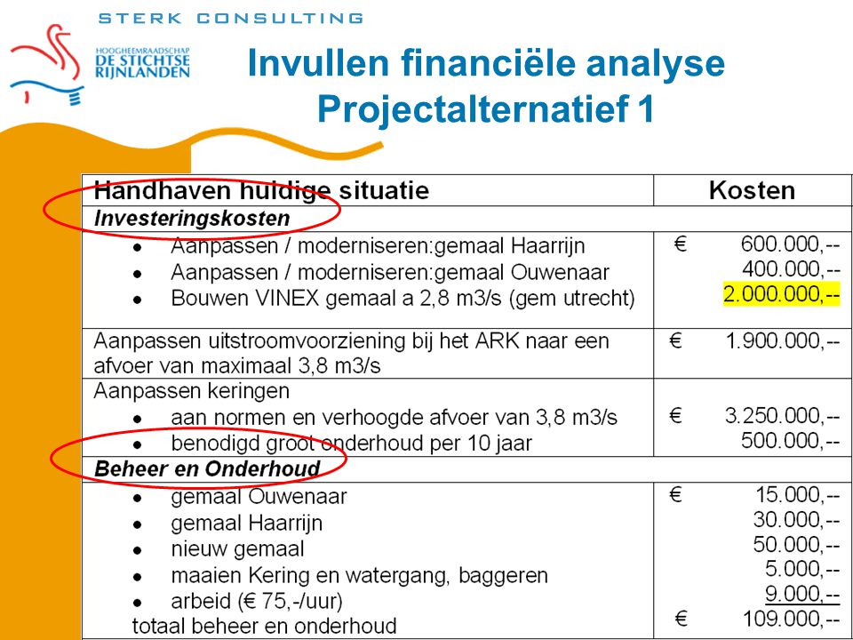 Invullen financiële analyse Projectalternatief 1