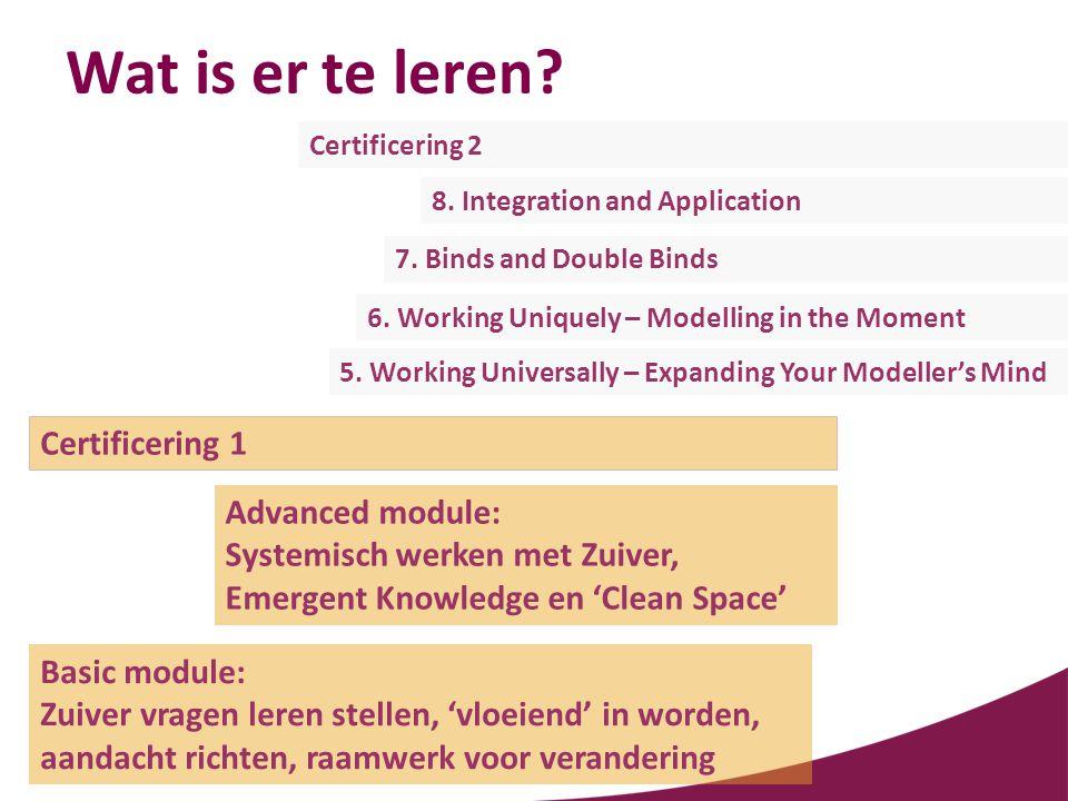 Wat is er te leren? Basic module: Zuiver vragen leren stellen, 'vloeiend' in worden, aandacht richten, raamwerk voor verandering Advanced module: Syst