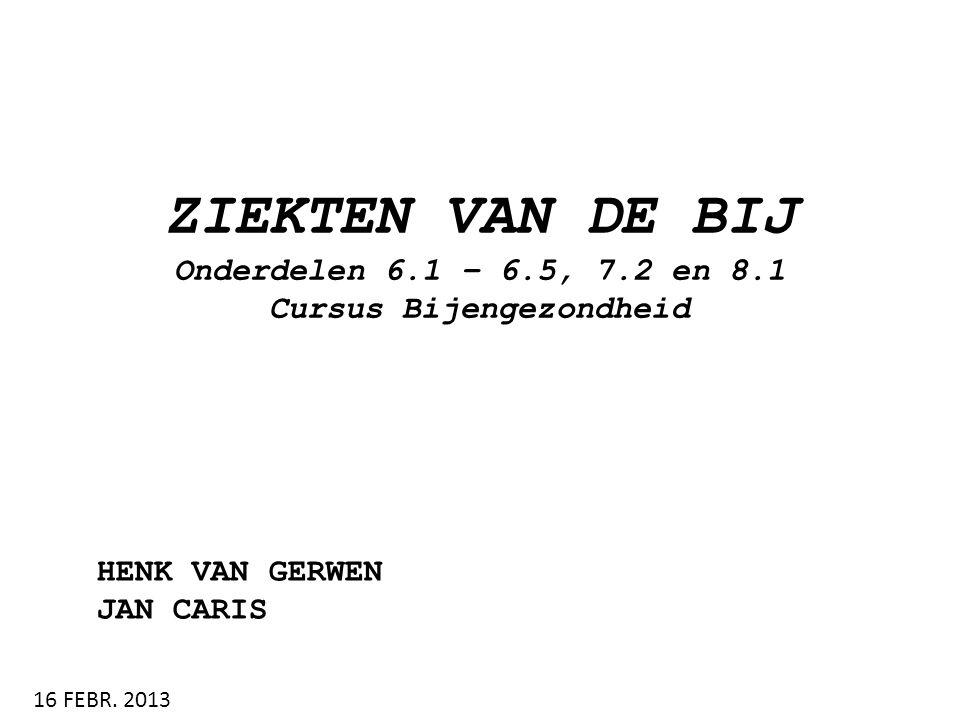 ZIEKTEN VAN DE BIJ Onderdelen 6.1 – 6.5, 7.2 en 8.1 Cursus Bijengezondheid HENK VAN GERWEN JAN CARIS 16 FEBR. 2013