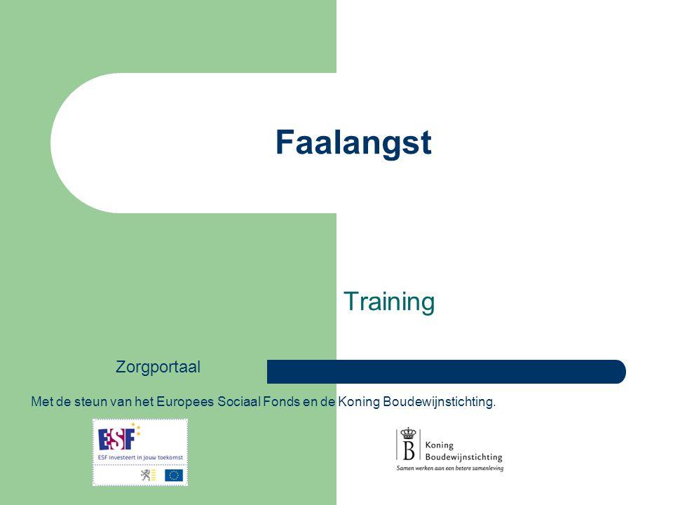 Faalangst Training Met de steun van het Europees Sociaal Fonds en de Koning Boudewijnstichting. Zorgportaal