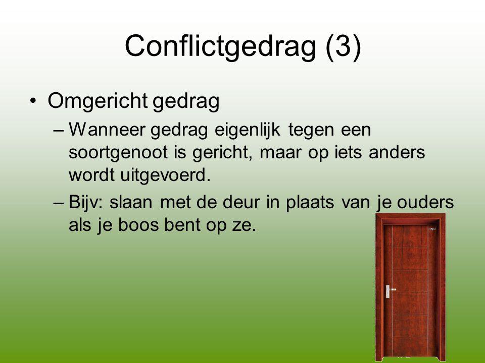 Conflictgedrag (3) •Omgericht gedrag –Wanneer gedrag eigenlijk tegen een soortgenoot is gericht, maar op iets anders wordt uitgevoerd.